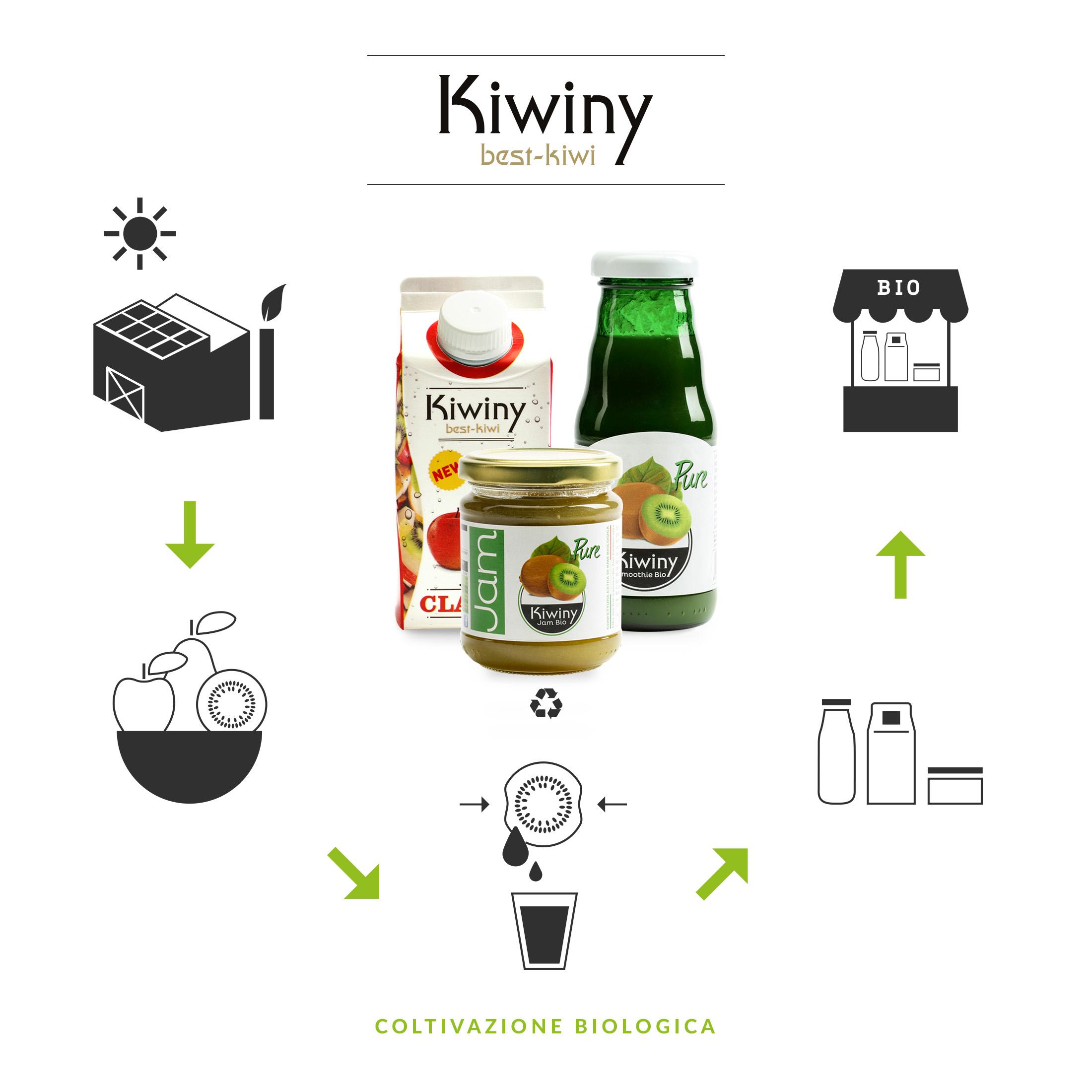 Infografica Kiwiny sostenibilità